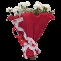Bouquet de cravos