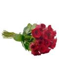 Buque com 12 rosas nacionais