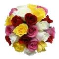 Buque com 20 rosas coloridas