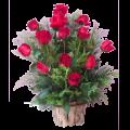 Rosas colombianas